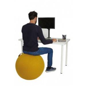 siège ergonomique Ergo Ball